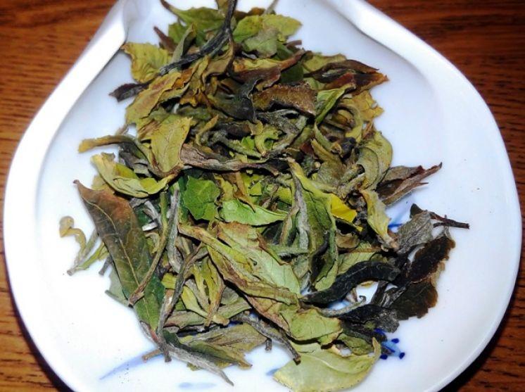 Чайная встреча в Институте Конфуция РГГУ была посвящена белым чаям Юньнани и Фуцзяни.