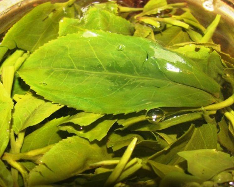 """Зелёный чай Лун Цзин из Сан Ся (Тайвань) """"Ти Три""""."""